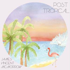 Post Tropical [Import] , James Vincent McMorrow