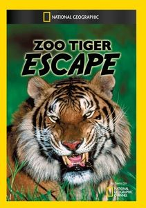 Zoo Tiger Escape