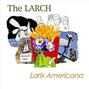 Larix Americana