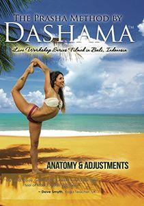 Anatomy & Adjustments