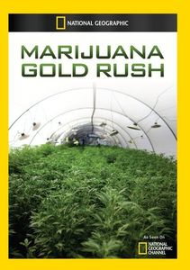Marijuana Gold Rush
