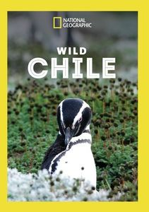 Wild Chile