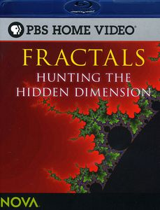Fractals: Hunting the Hidden Dimension