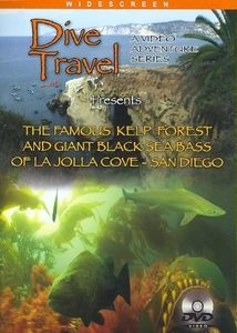The Famous Kelp Forest and Giant Black Sea Bass of La Jolla Cove - San