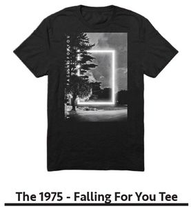 The 1975 Falling For You (Mens /  Unisex Adult T-Shirt) Black, SS [Small] Front Print Only
