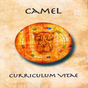 Curriculum Vitae [Import]