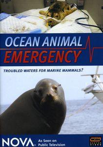 Nova: Ocean Animal Emergency
