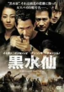 Last Witness [Import]