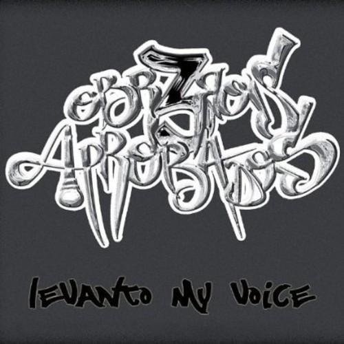 Levanto My Voice