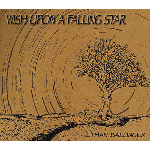 Wish Upon a Falling Star