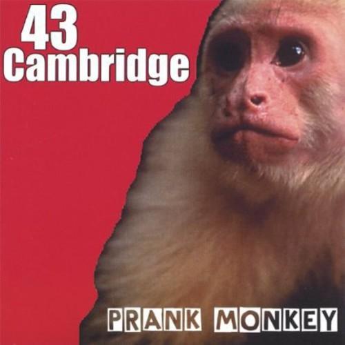 Prank Monkey