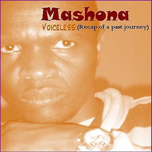 Voiceless: Recap of a Past Journey