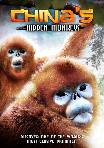 China's Hidden Monkeys