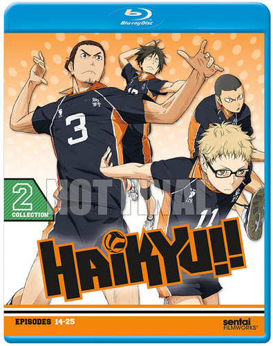 Haikyu!! Collection 2
