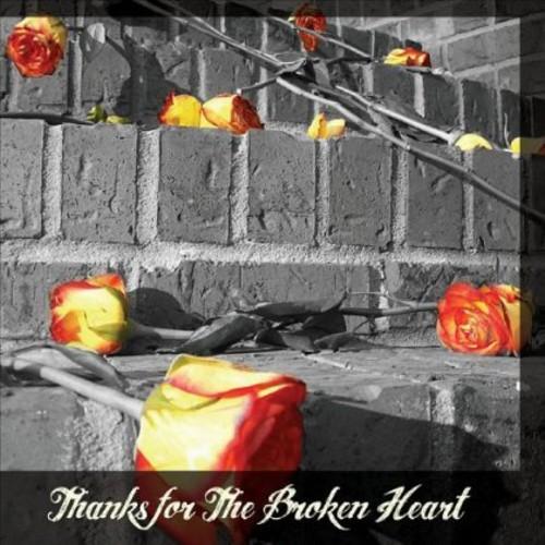 Thanks for the Broken Heart