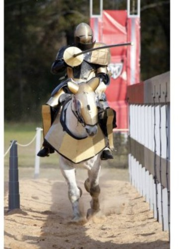 Full Metal Jousting: Ultimate Extreme Sport