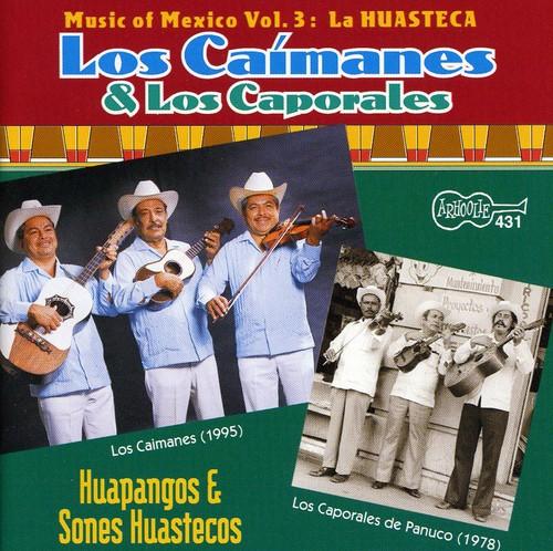 Huapangos y Sones Huastecos