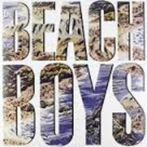 Beach Boys the (LP)
