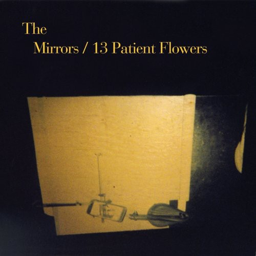 13 Patient Flowers