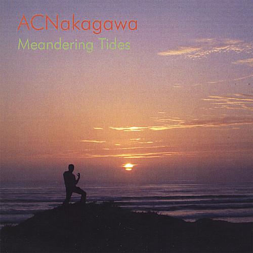Meandering Tides