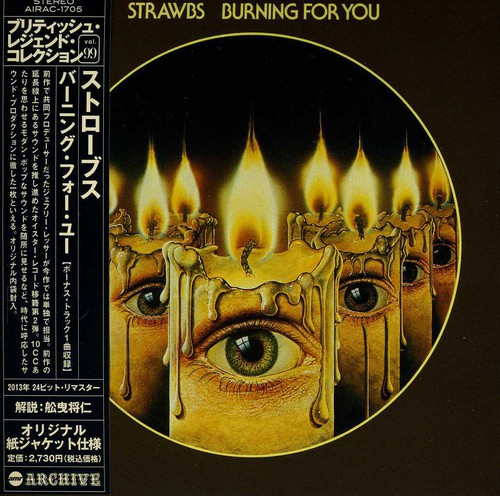 Burning for You [Import]