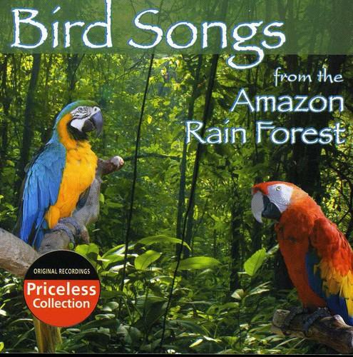 Bird Songs Of The Amazon Rain Forest