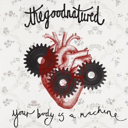 Your Body Is a Machine [Import]
