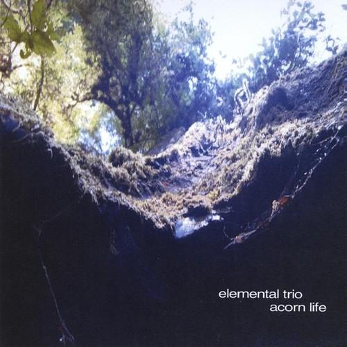 Acorn Life