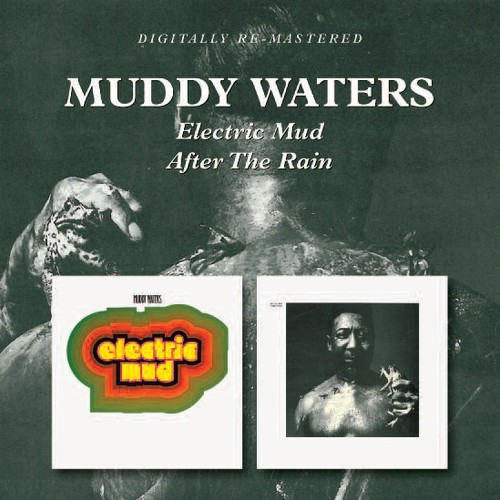 Electric Mud /  After the Rain [Import]