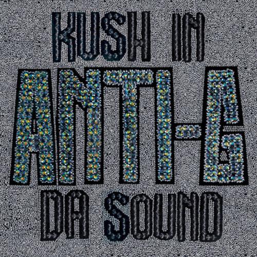Kush in Da Sound