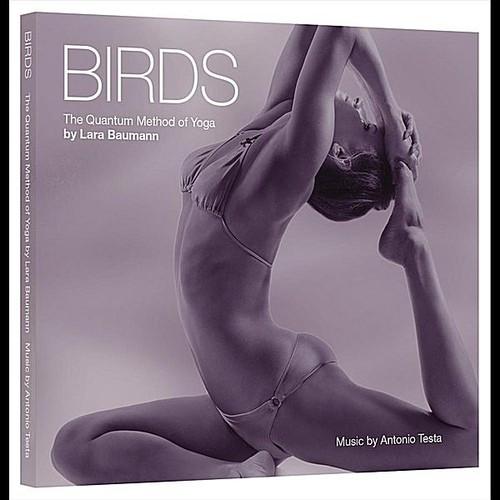 Birds Quantum Method of Yoga