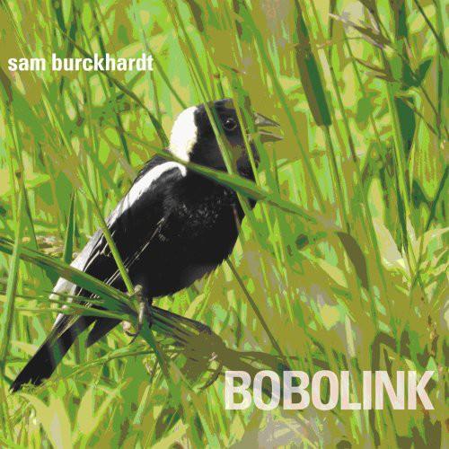 Bobolink