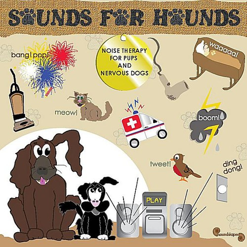 Sounds for Hounds: Noise Therapy Pups Nervous Dogs