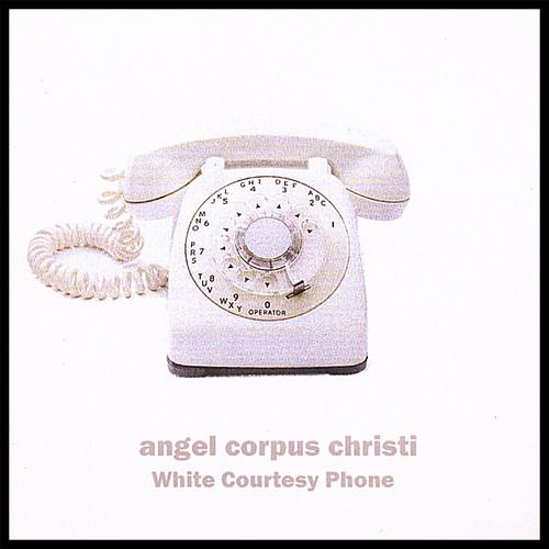 White Courtesy Phone