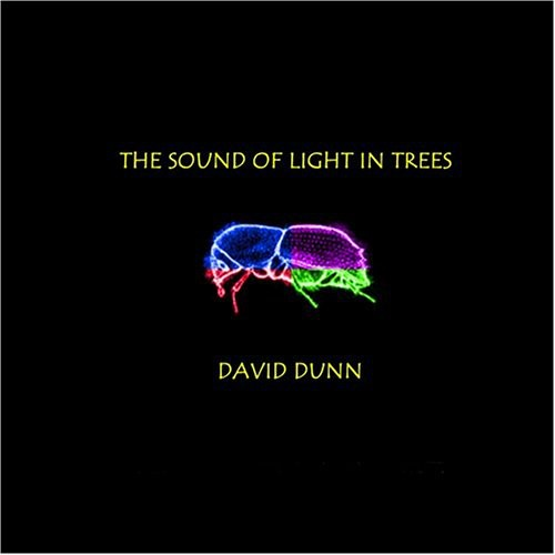 Sound of Light in Trees