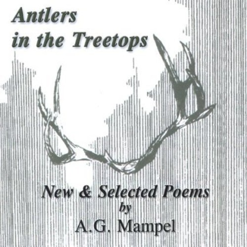 Antlers in the Treetops
