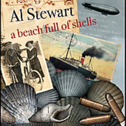 Beach Full of Shells