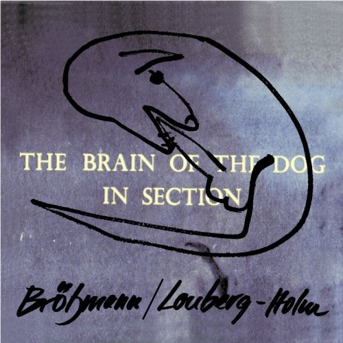 The Brain Of The Dog In Section