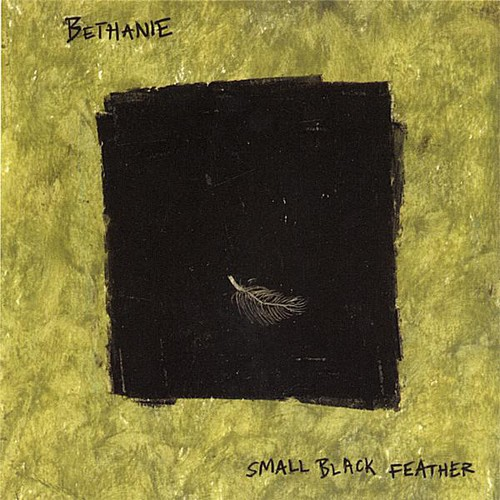 Small Black Feather