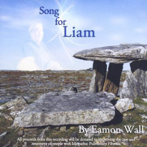 Song for Liam