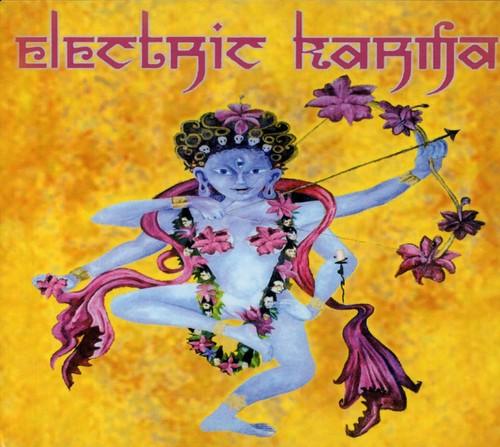 Electric Karma /  Various