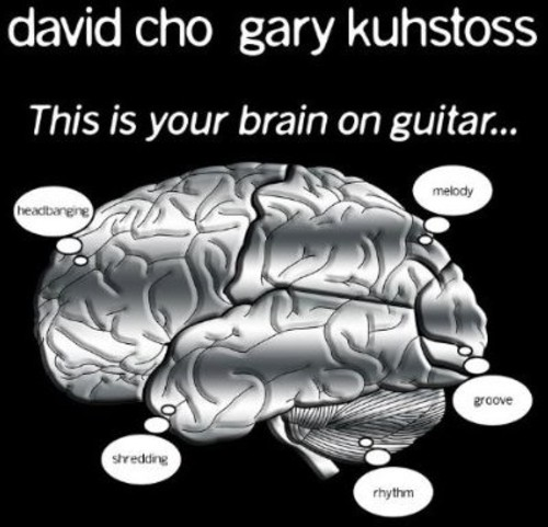 This Is Your Brain on Guitar