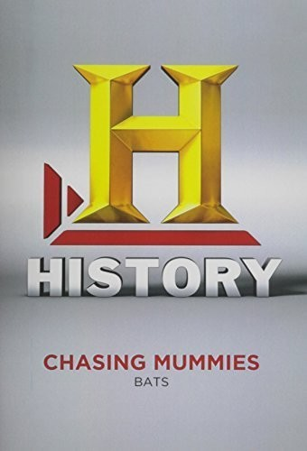 Chasing Mummies: Bats