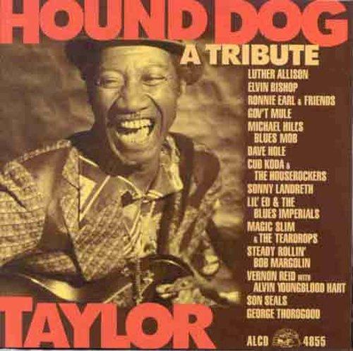 Hound Dog Taylor: Tribute