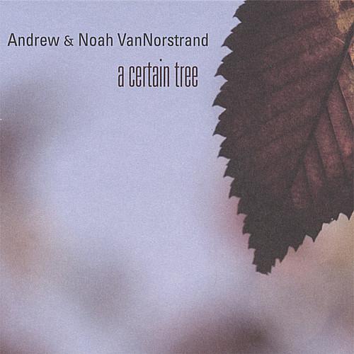 Certain Tree