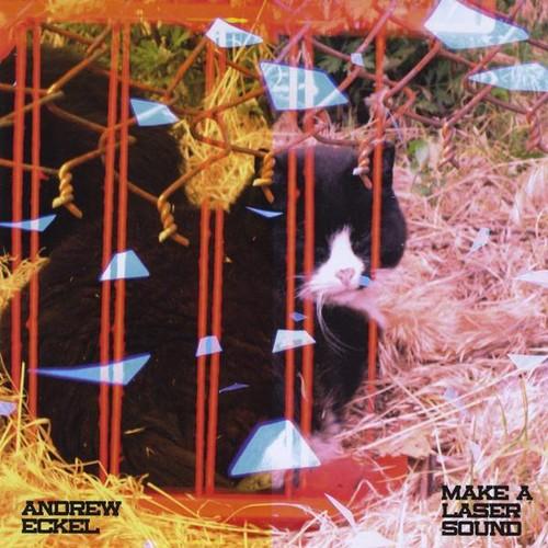 Eckel, Andrew : Make a Laser Sound