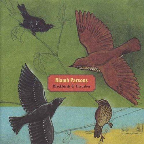 Blackbirds & Thrushes