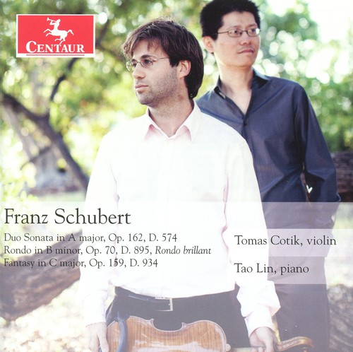 Duo Sonata in a Major Op 162 D 574