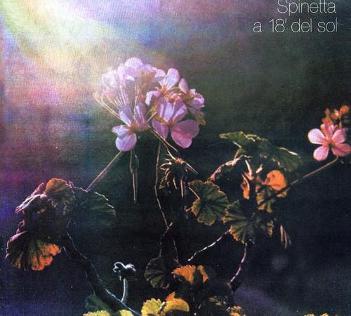 A 18' Del Sol [Import]