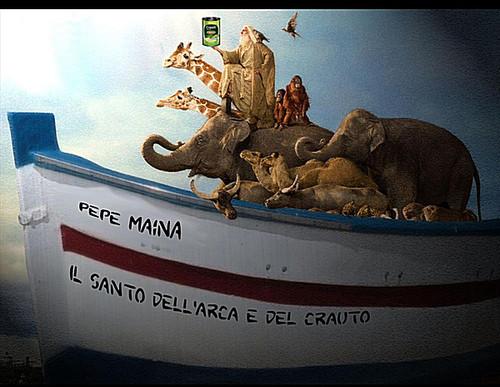 Il Santo Dell'arca E Del Crauto